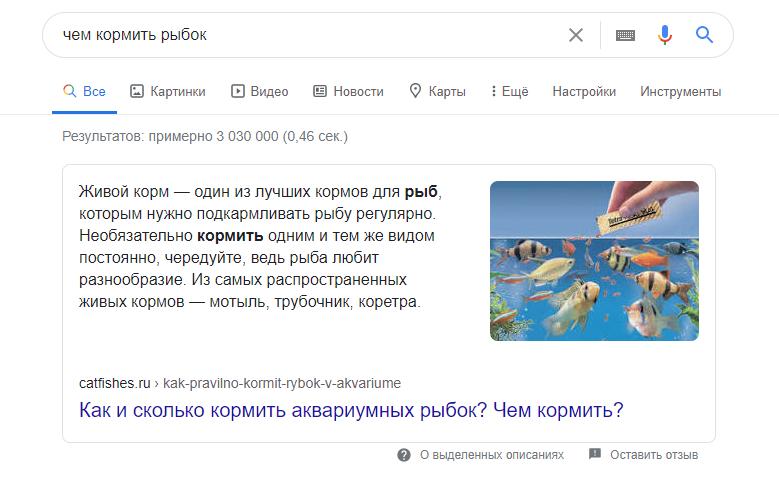 Быстрые ответы Google